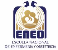 eneo_logo